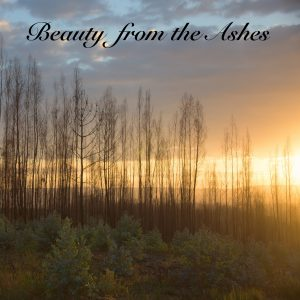 Beauty from the Ashes (feat. Becky Willard)<br>Suzanne Hodson